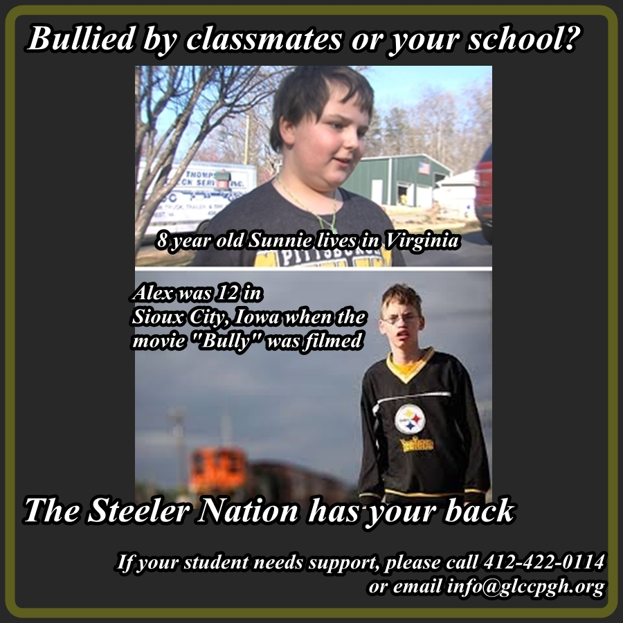 Steeler Nation Bullies