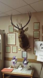 The lodge Elk.