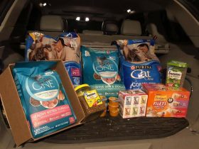 Cat Food Drive Pittsburgh