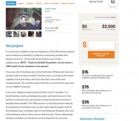Fundraiser for homeless cats
